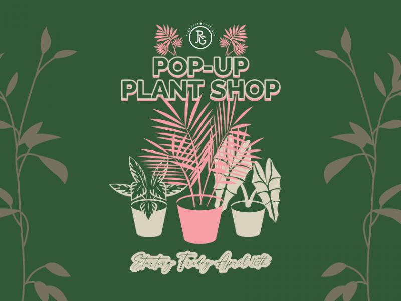 Pop-Up Plant & Flower Shop