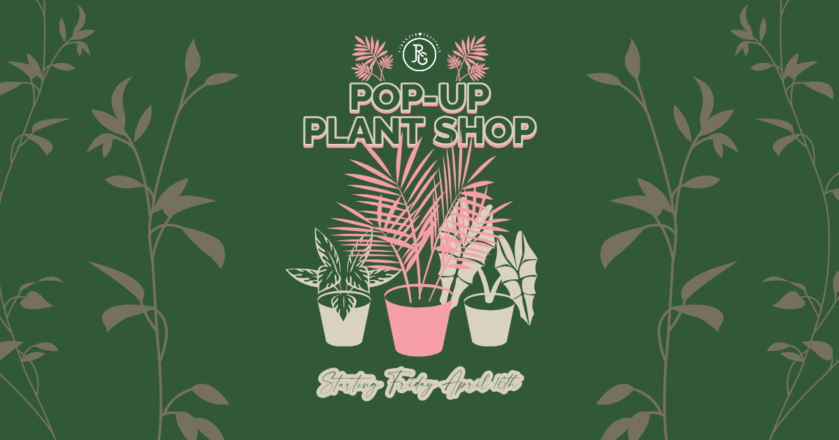 Pop-Up Plant & Flower Shop